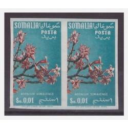 SOMALIA AFIS 1956 - FIORI 1...
